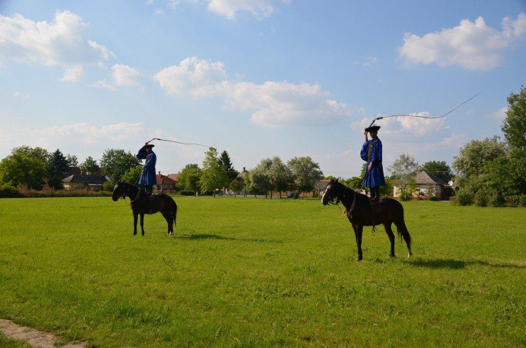 hongarije paarden manege